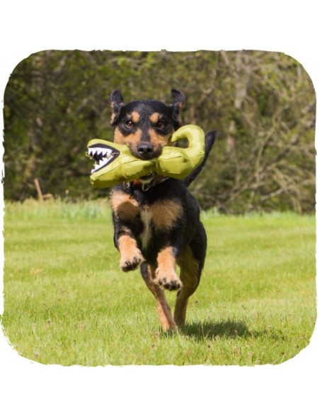 Beco Pets - Aretha il Coccodrillo - Taglia L