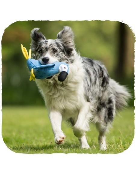 Beco Pets - Lucy il Pappagallo - Taglia L