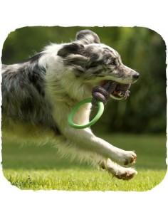 Beco Pets - Beco Hoop - Anello e corda - Vari colori - Taglia L
