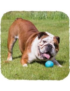Beco Pets - Beco Ball - Palla in gomma naturale - Vari colori - Taglia S