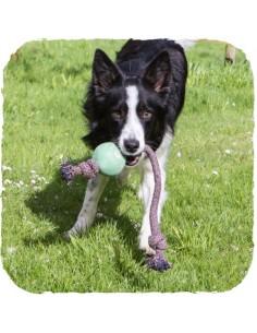 Beco Pets - Beco Ball on a Rope - Corda in cotone e Palla in gomma naturale - Vari colori - Taglia L