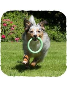 Beco Pets - Beco Hoop - Anello - Vari colori - Taglia L