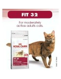 ROYAL GATTO FIT 32 GR 400